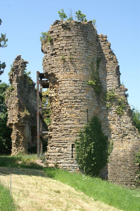 Tour médiévale de Château-Chalon