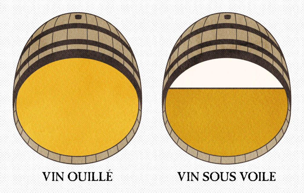 Vin ouillé et vin sous voile